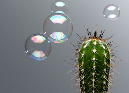 Bubble and cactus